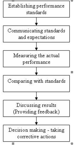Process of Performance Appraisal, 2012
