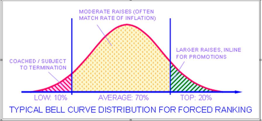Employee Performance Curve