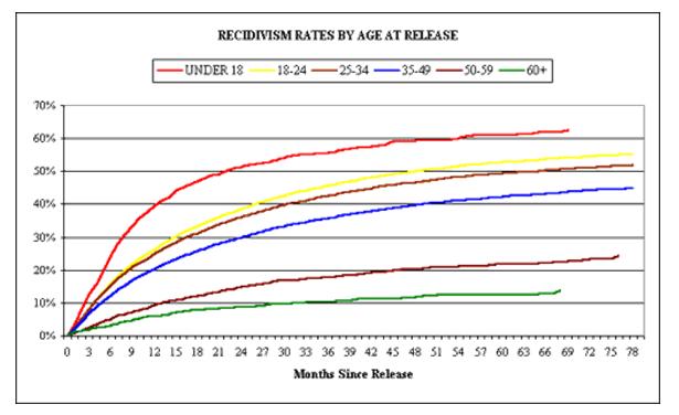 Factors Affecting Recidivism Rates