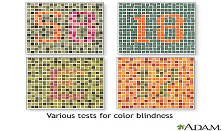 standard test used in order to determine if a person is color blind