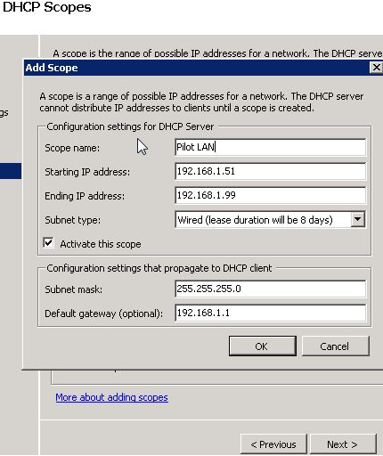 Figure 1.5 (DHCP Scopes)